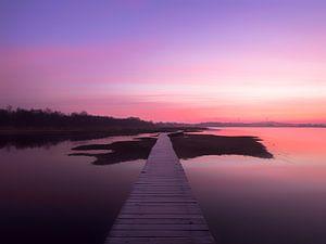 Kleurrijke ochtend van Maikel Brands