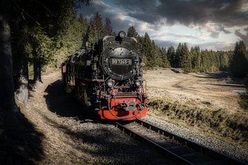 Der alte Dampfzug von Mart Houtman