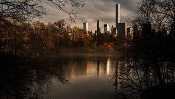 Central Park Herbst von Menko van der Leij