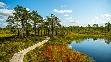 Soomaa Nationaal Park