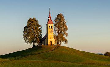 Kirche von Sveti Thomas von Gorenj, Slowenien von Adelheid Smitt