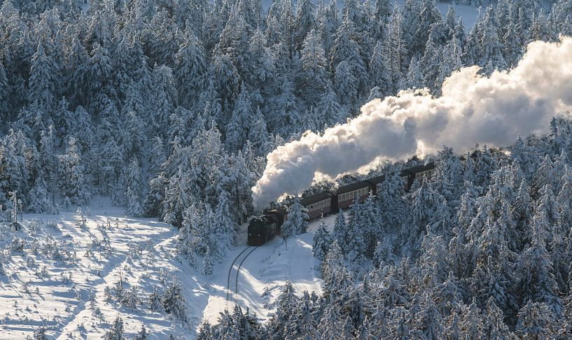 Harzer Schmalspurbahn im Winter van Patrice von Collani