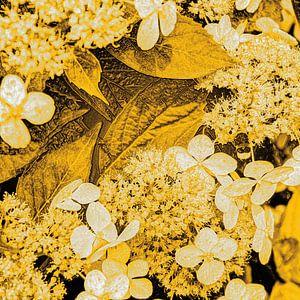 Digital Art Medium Bloemen Goud