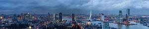 Rotterdam skyline, Panorama van