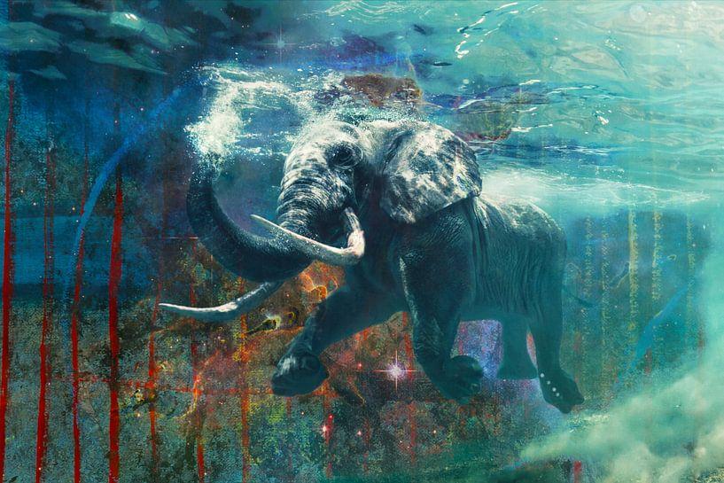Zwemmende olifant van Giovani Zanolino