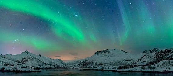 Noorderlicht, poollicht of Aurora Borealis over de Lofoten eilanden in Noord-Noorwegen van Sjoerd van der Wal