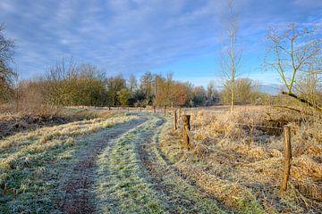 Eingefrorener Wanderweg von Johan Vanbockryck