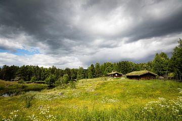 Historische houten huisjes in Noorwegen sur Marcel Alsemgeest