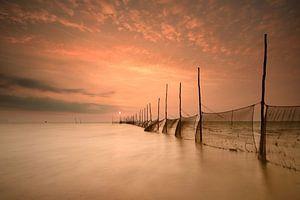 Visnetten Texel bij zonsopkomst van