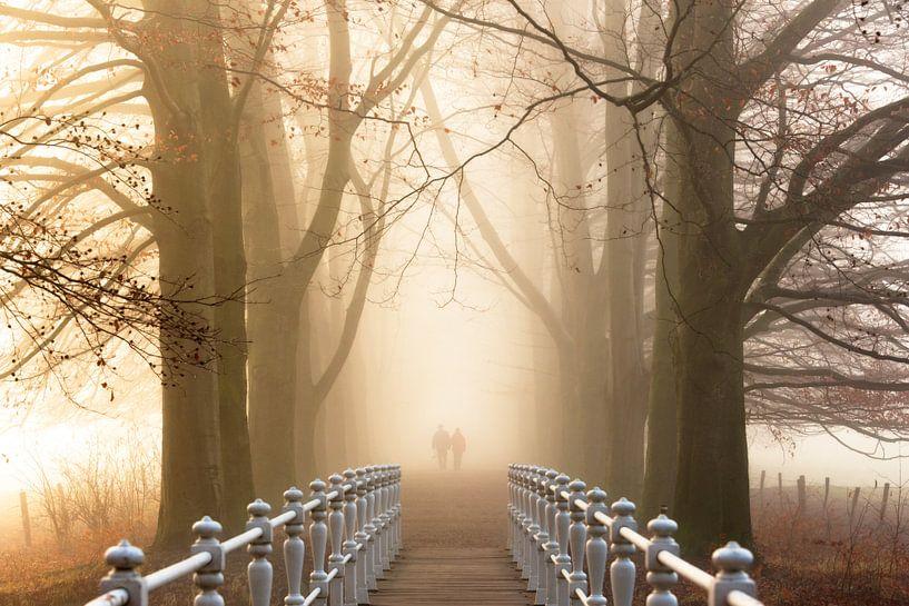 Lovers Lane. van Inge Bovens