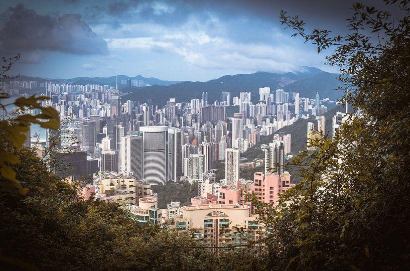 De prachtige, kleurrijke skyline van Hong Kong (China) van Claudio Duarte