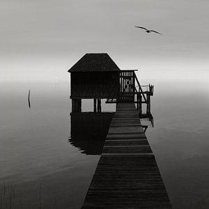 Solitude van Lena Weisbek