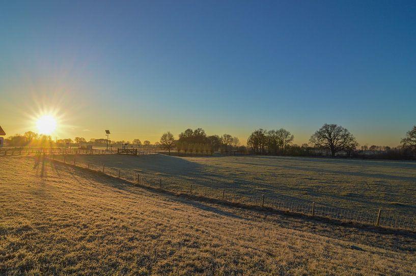 Perfecte zonsopkomst boven weiland van Patrick Verhoef