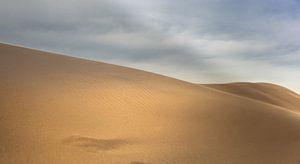 Woestijn zandduinen