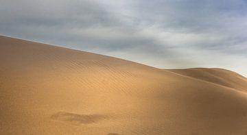 Woestijn zandduinen van Olivier Van Cauwelaert