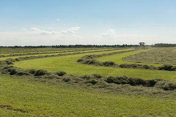 tractor met schudder op een groot weiland van Tonko Oosterink