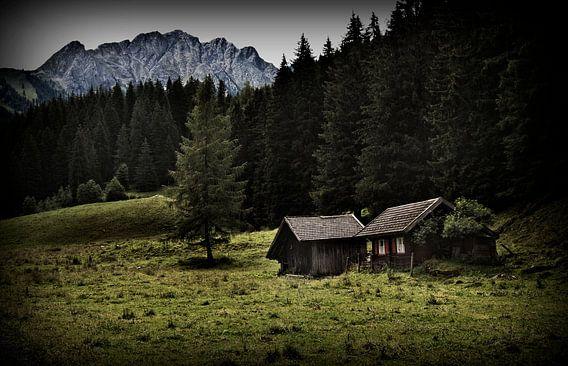 Oostenrijkse huisjes van Eus Driessen