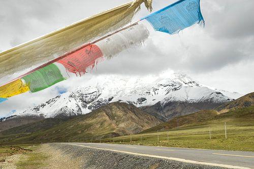 Karola gletsjer op de Tibetaanse hoogvlakte van Zoe Vondenhoff