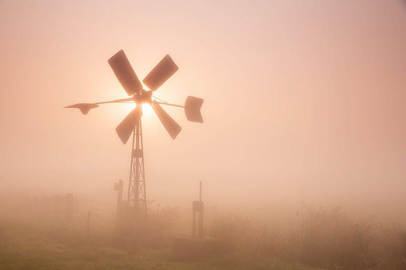 Molentje in de mist van Monique van Genderen (in2pictures.nl fotografie)