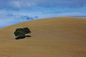 Landschap Minimalisme in Toscane