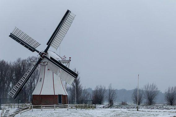 De Witte molen. van Anjo ten Kate