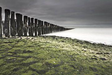 Strandpalen aan de Noordzee (Breskens) van Niek Goossen