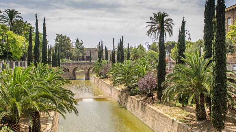 Paradijs in Palma de Mallorca van Mark Bolijn
