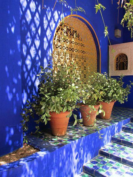 Majorelle tuin van Nina van Bodegom op canvas, behang en meer
