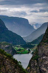 Noorwegen fjord van