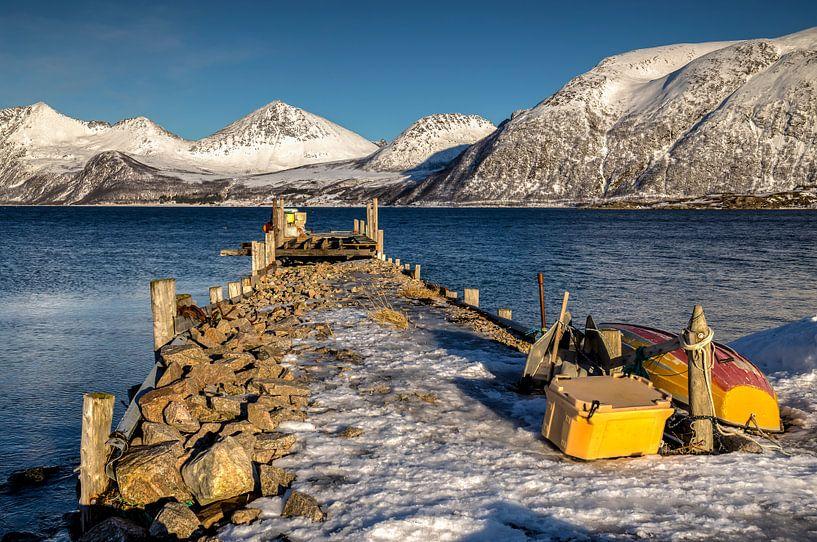 Winter op Kvaløya, Noorwegen van Adelheid Smitt