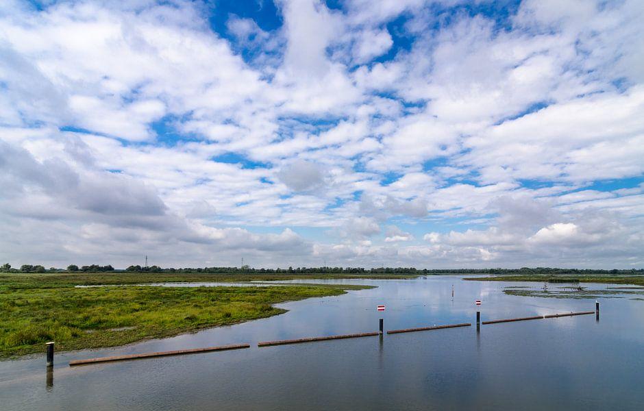 Biesbosch 3