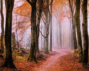 Vallen voor de herfst