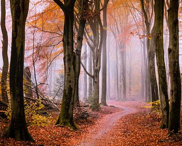 Vallen voor de herfst van Tvurk Photography