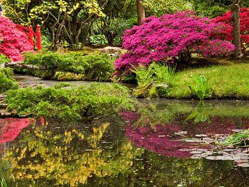 japanse tuin van Dietjee FoTo