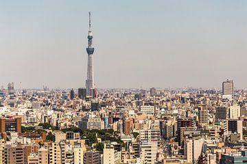 TOKYO 35 sur Tom Uhlenberg