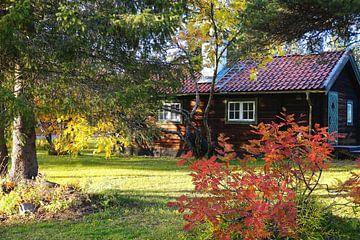 Einsames Haus im Herbstwald von Thomas Zacharias