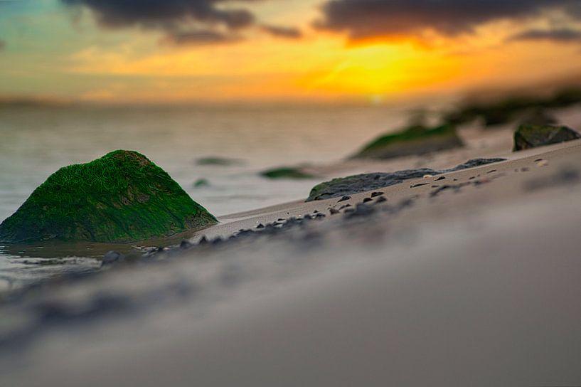 Felsen am Strand I von Wim van Beelen