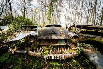 Opel van Niki Moens