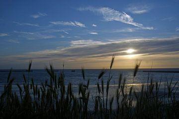 Sonnenuntergang am Meer von wil spijker