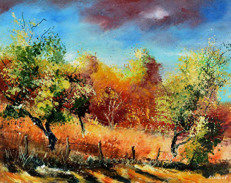Obstgarten von pol ledent