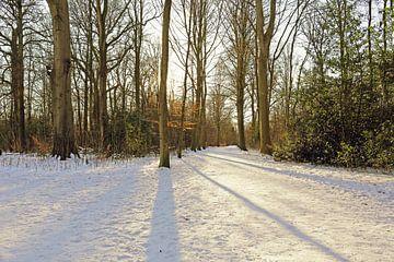 Schnee im Park von Ronald Smits