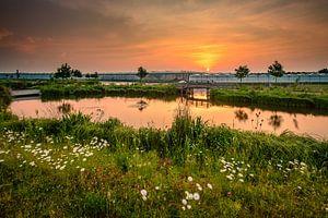 Sunrise van Danny Taheij
