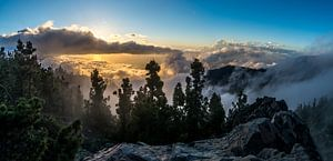 Tenerife sunset van