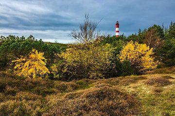 Lighthouse in Wittduen on the island Amrum, Germany van Rico Ködder