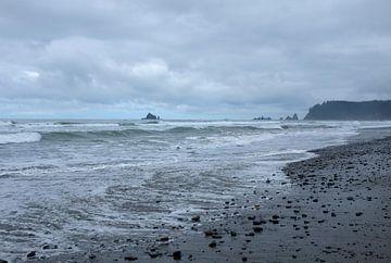 'Rialto beach', Washington van