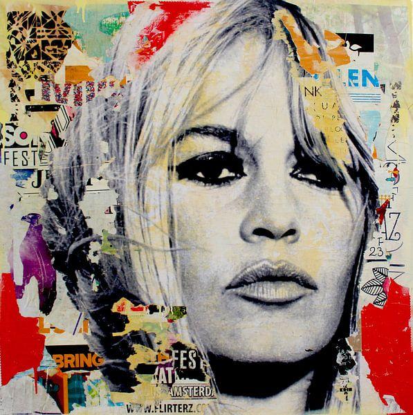 Brigitte Bardot  van Michiel Folkers