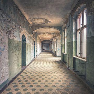 The abandoned hospital sur Frans Nijland