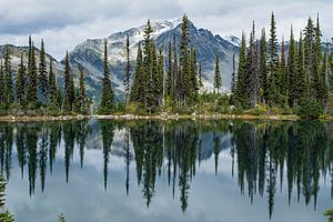 Weerspiegeling van bergen en bos in Canadees meer van