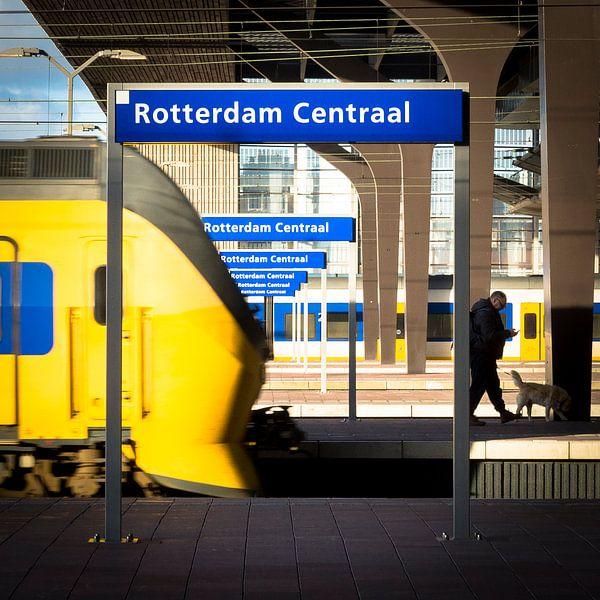 Rotterdam Centaal sur Sjoerd de Hoop