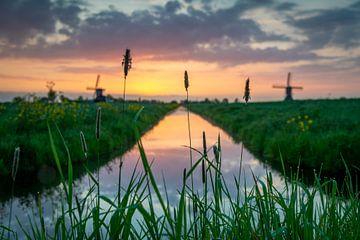 Sonnenaufgang in Hoogmade von Frank Laurens